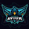 Avium-eSports Youth